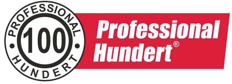 Моторные и трансмиссионные масла Professional Hundert