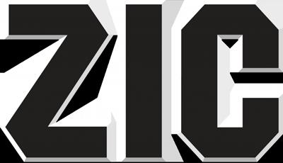 Масло ZIC для бензиновых и дизельных двигателей